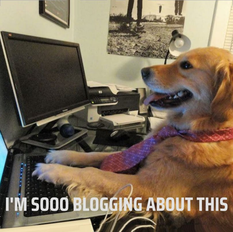 Blog 1 featured